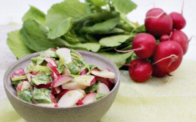 Knackiger Radieschensalat – Rezept des Monats